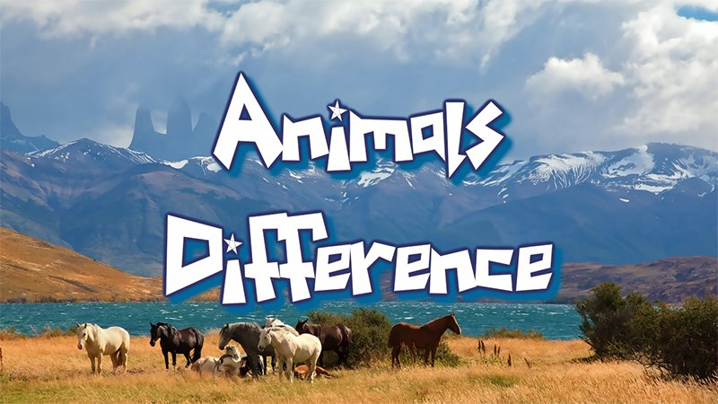 Image Animal Differences